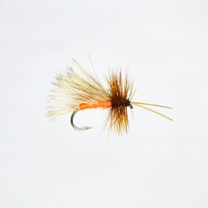 October Caddis Profile